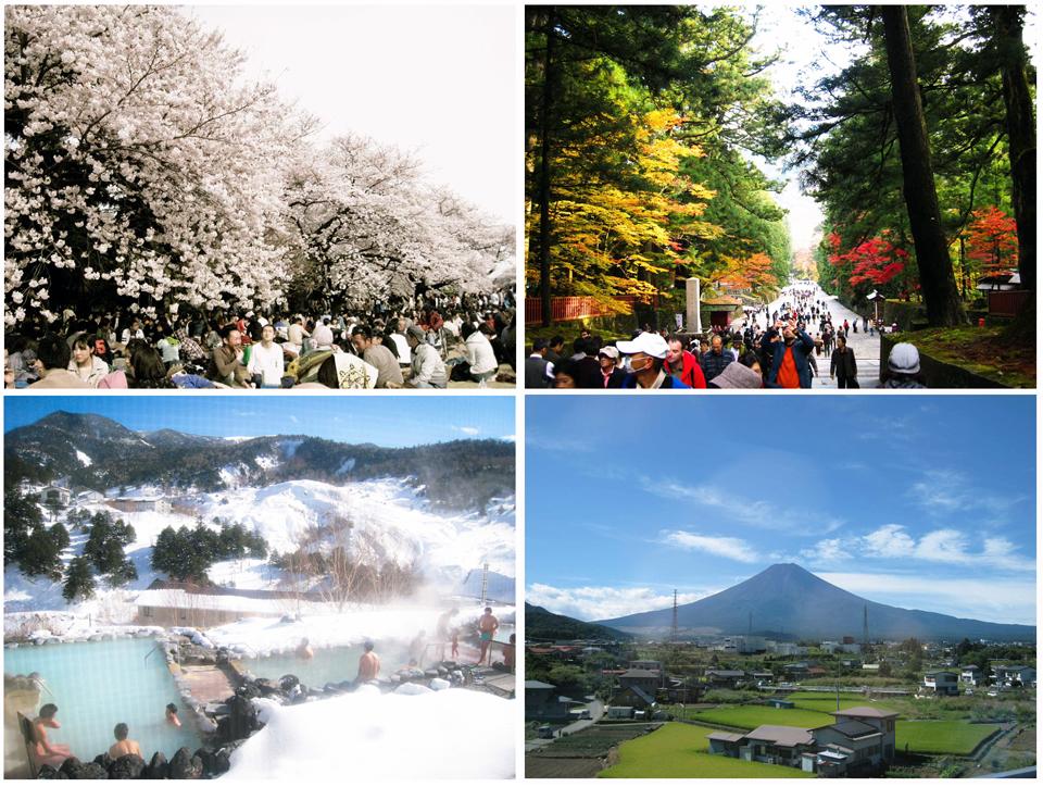 TOKYO:  WHEN TO GO?